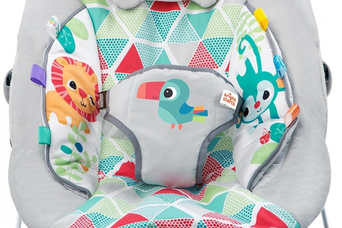 Bright Starts Toucan Tango Bouncer three-point harness
