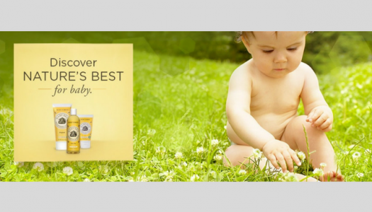 Burt's Bees Diaper Ointment Review