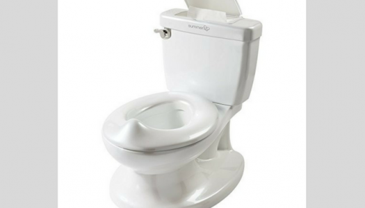 Best Potty Training Chairs