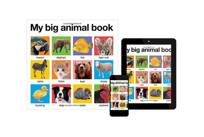 My Big Animal Book, by Roger Priddy