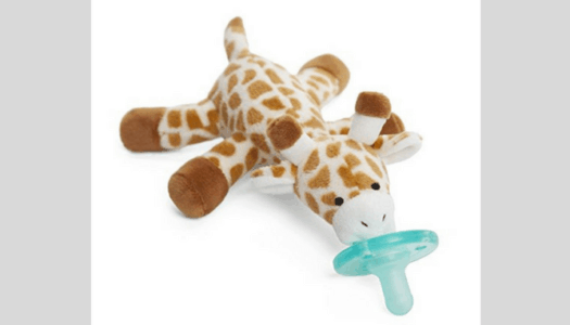 Best Baby Pacifiers